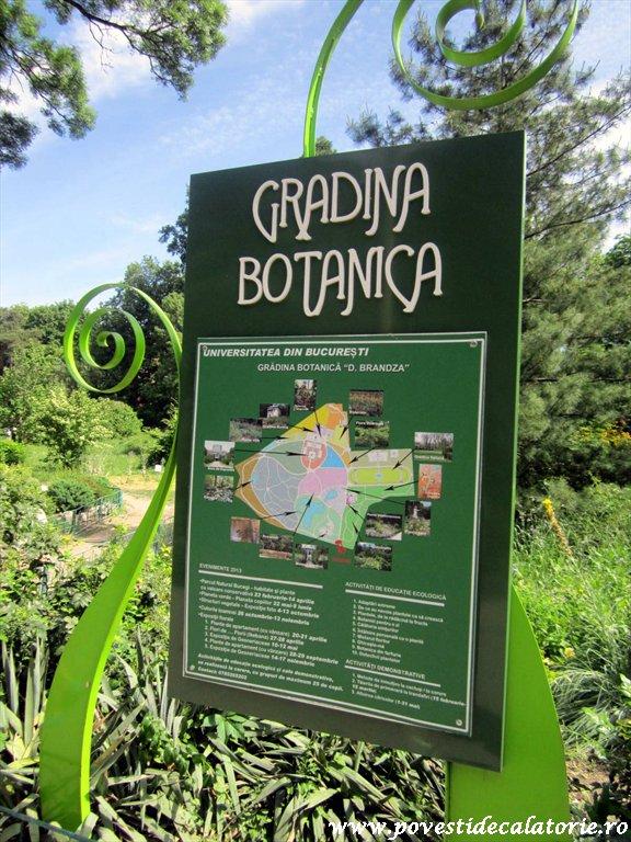 Gradina Botanica Dimitrie Brandza Bucuresti (1)