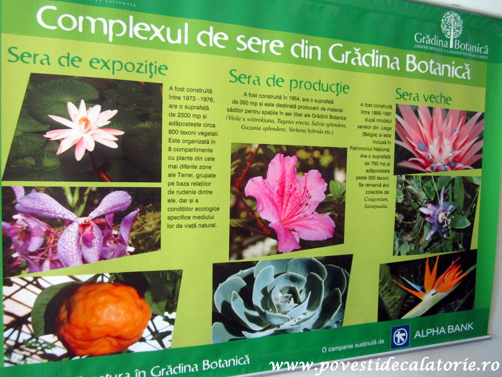 Gradina Botanica Dimitrie Brandza Bucuresti (106)