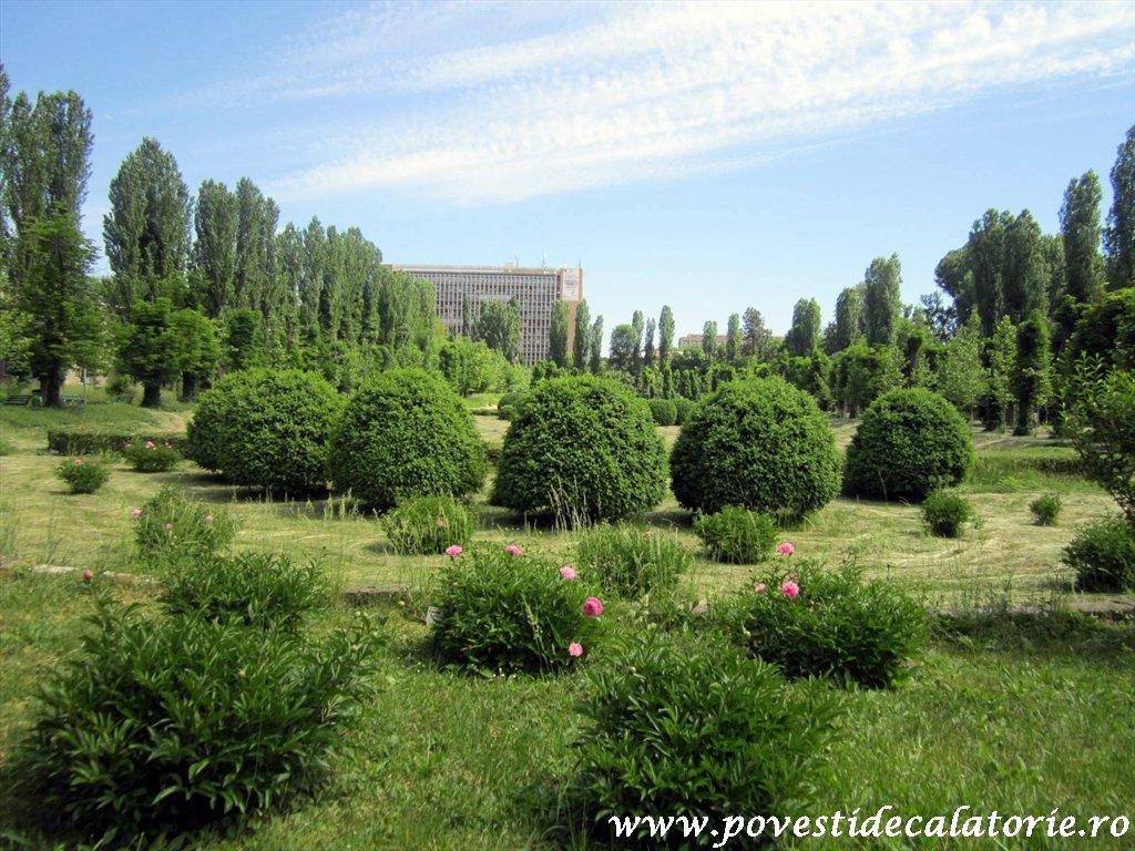 Gradina Botanica Dimitrie Brandza Bucuresti (11)