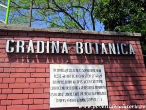 Gradina Botanica Dimitrie Brandza Bucuresti (150)