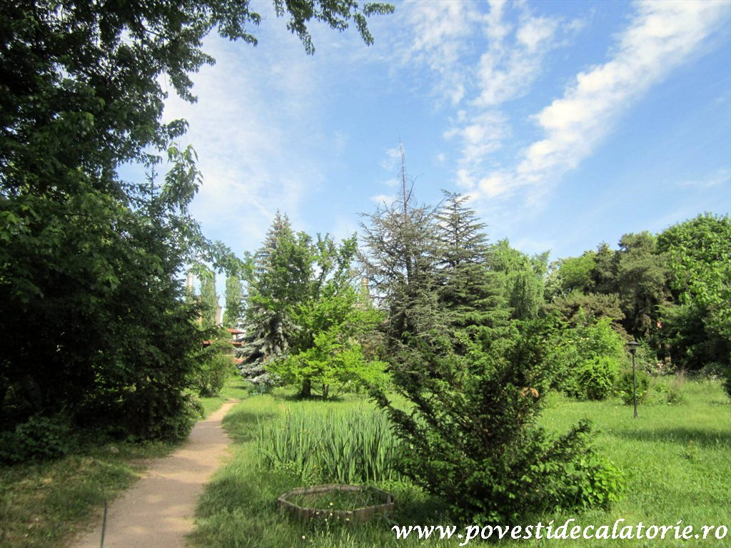 Gradina Botanica Dimitrie Brandza Bucuresti (2)