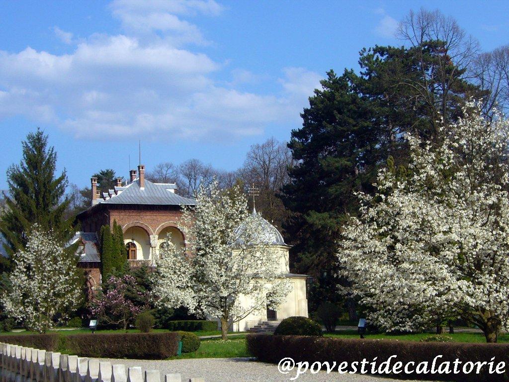 Manastirea Curtea de Arges (24)