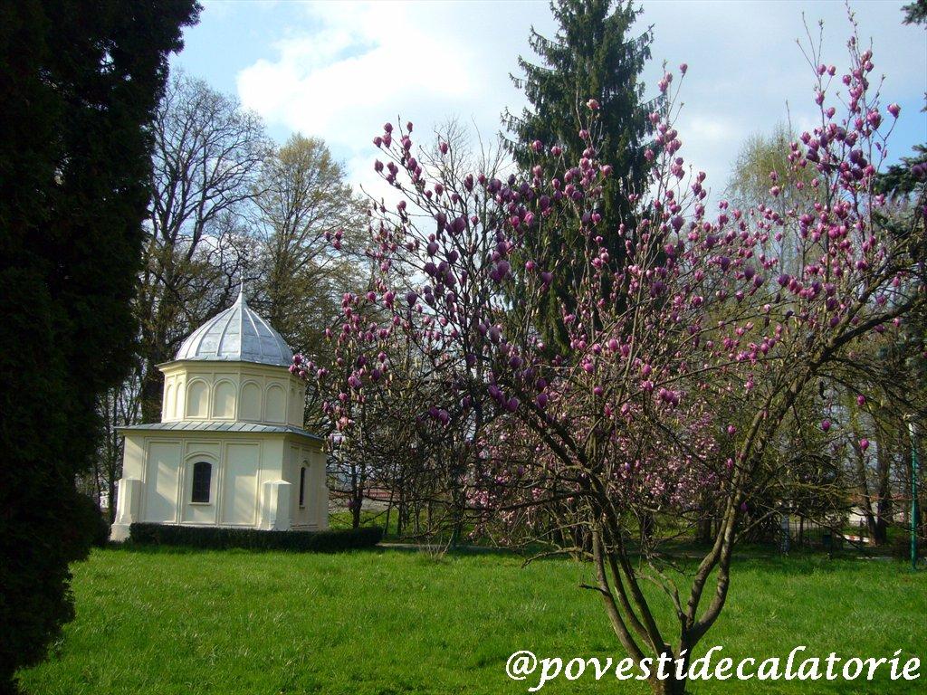 Manastirea Curtea de Arges (30)