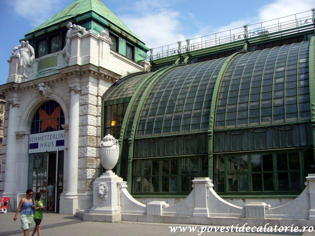 Muzeul Fluturilor Viena (4)