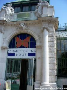 Muzeul Fluturilor Viena (5)