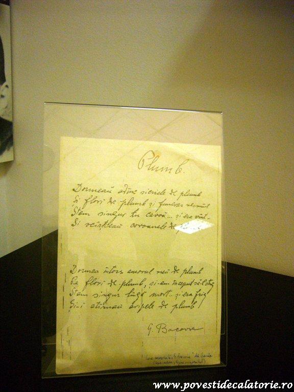 Muzeul Literaturii Romane (11)