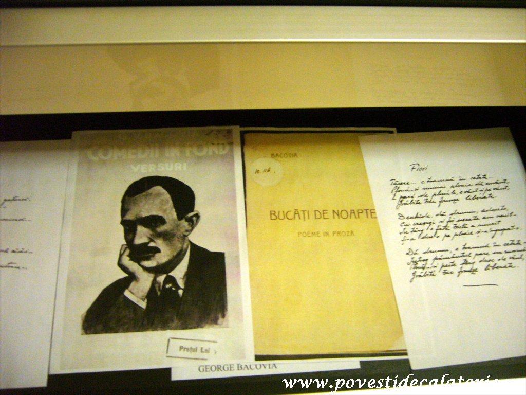 Muzeul Literaturii Romane (13)