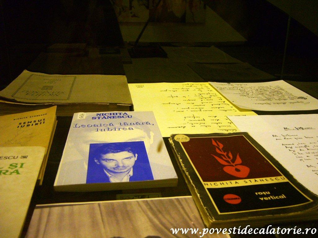 Muzeul Literaturii Romane (43)