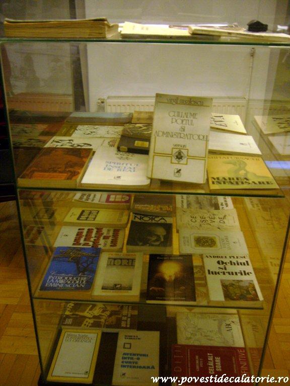 Muzeul Literaturii Romane (44)