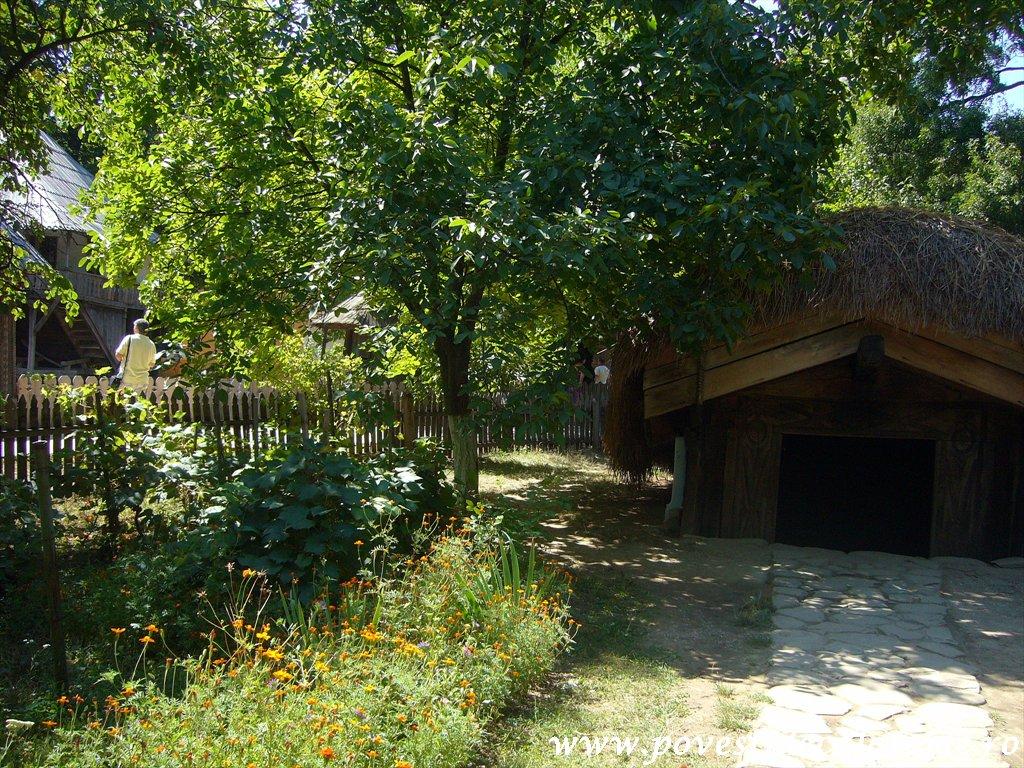 Muzeul Satului (1)