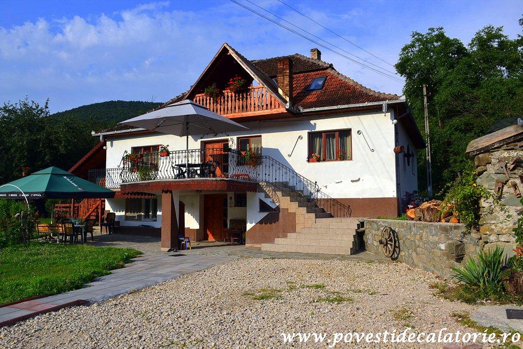 Pensiunea Casa Butnarului (11)
