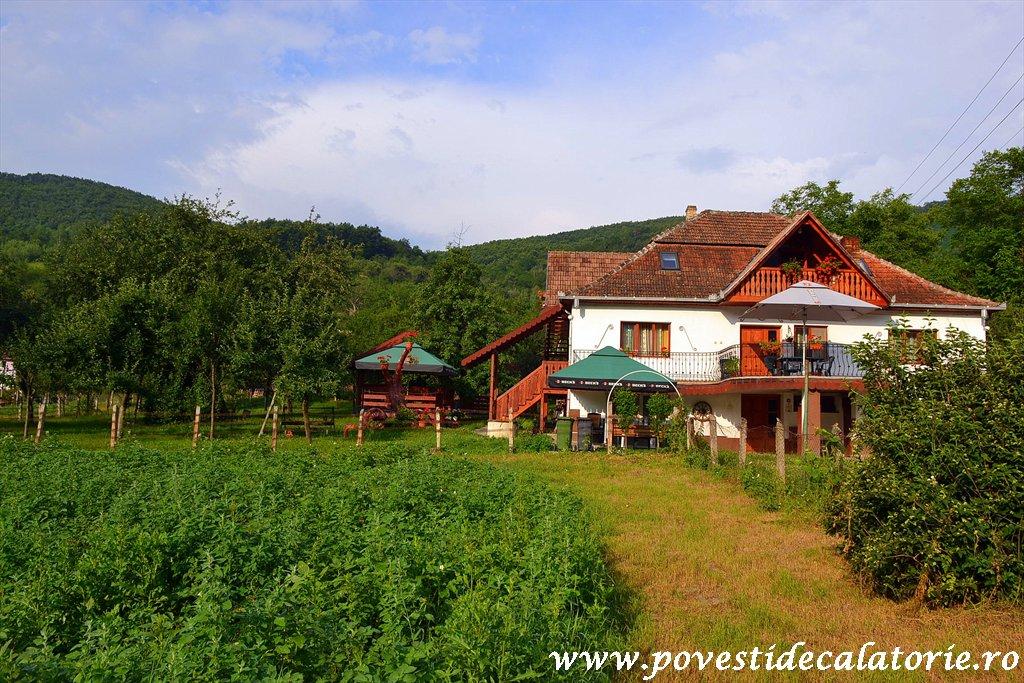 Pensiunea Casa Butnarului (12)