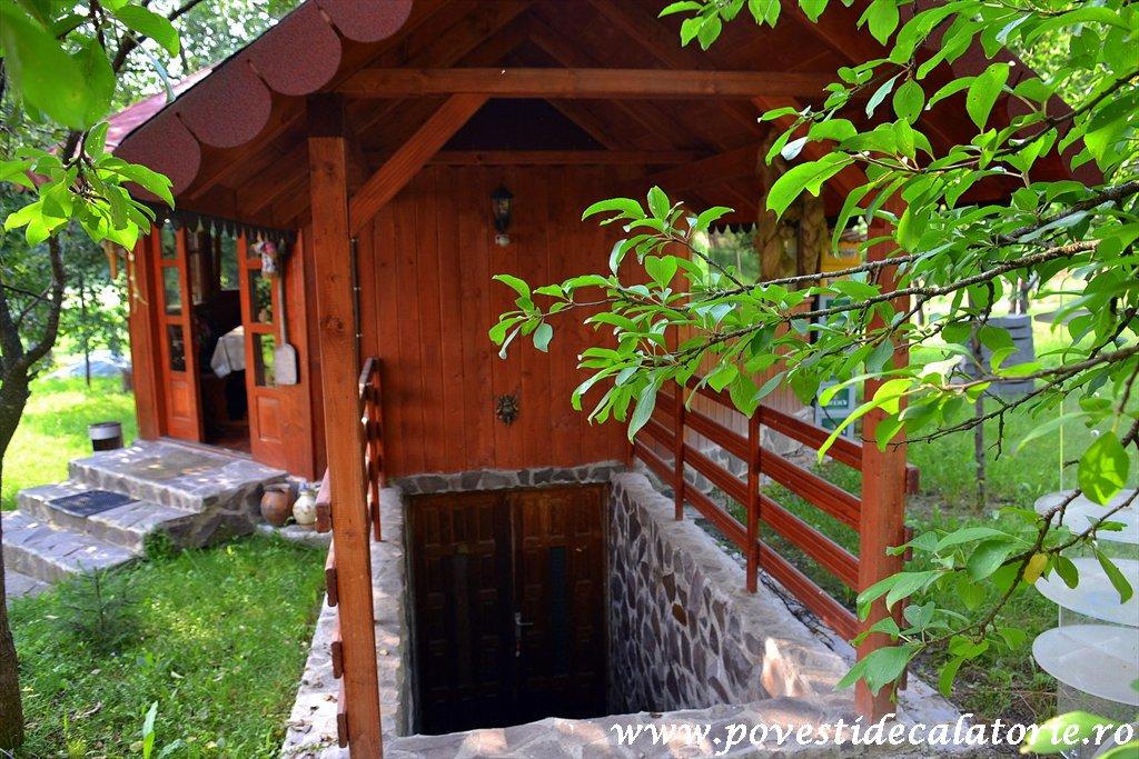 Pensiunea Casa Butnarului (20)