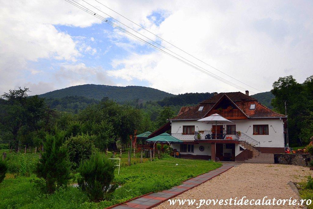 Pensiunea Casa Butnarului (31)