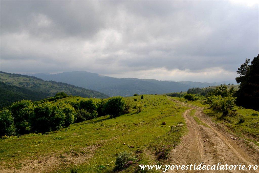 Valea Doftanei Atra (135)
