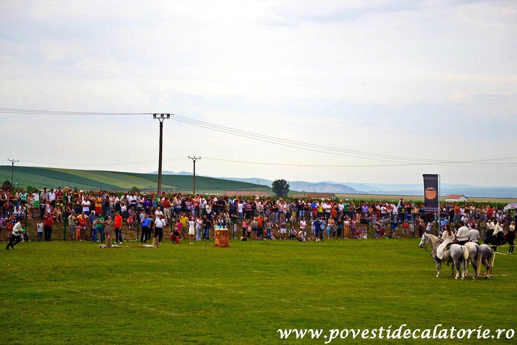 Festivalul Cetatilor Dacice din Cricau 2013 (51 of 82)
