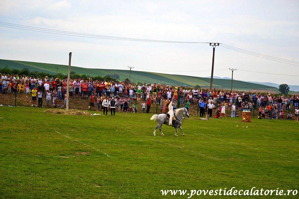 Festivalul Cetatilor Dacice din Cricau 2013 (52 of 82)