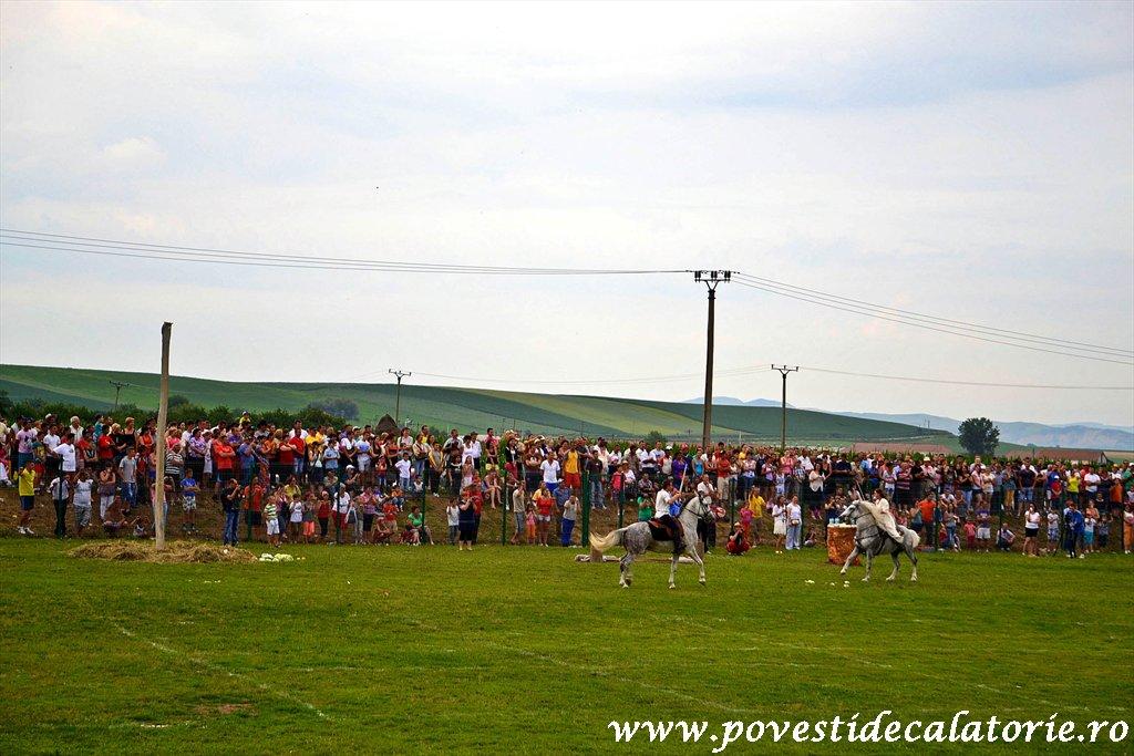 Festivalul Cetatilor Dacice din Cricau 2013 (53 of 82)