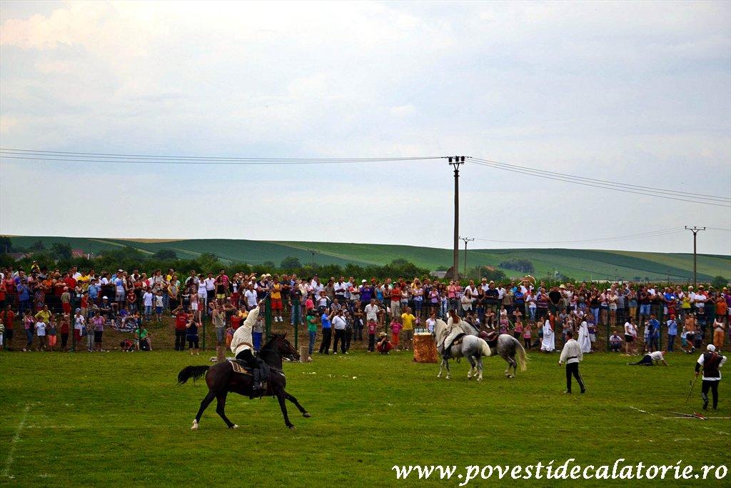 Festivalul Cetatilor Dacice din Cricau 2013 (54 of 82)
