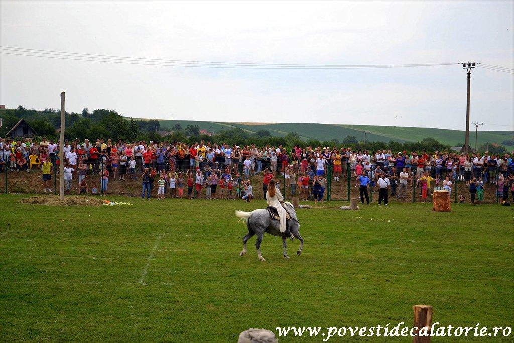 Festivalul Cetatilor Dacice din Cricau 2013 (56 of 82)