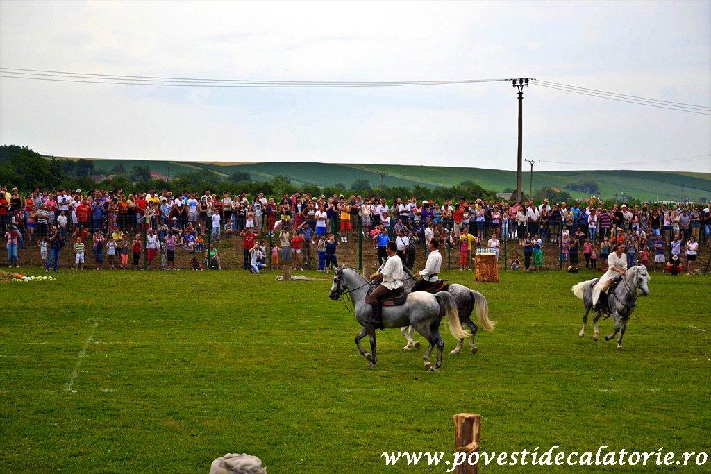 Festivalul Cetatilor Dacice din Cricau 2013 (57 of 82)