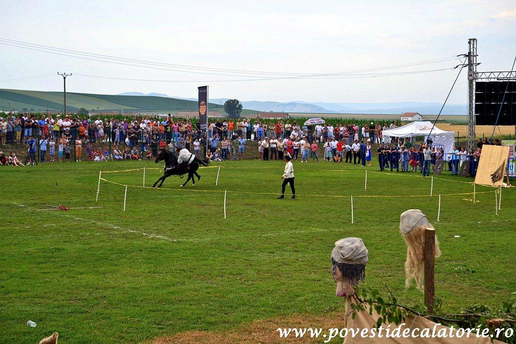 Festivalul Cetatilor Dacice din Cricau 2013 (58 of 82)