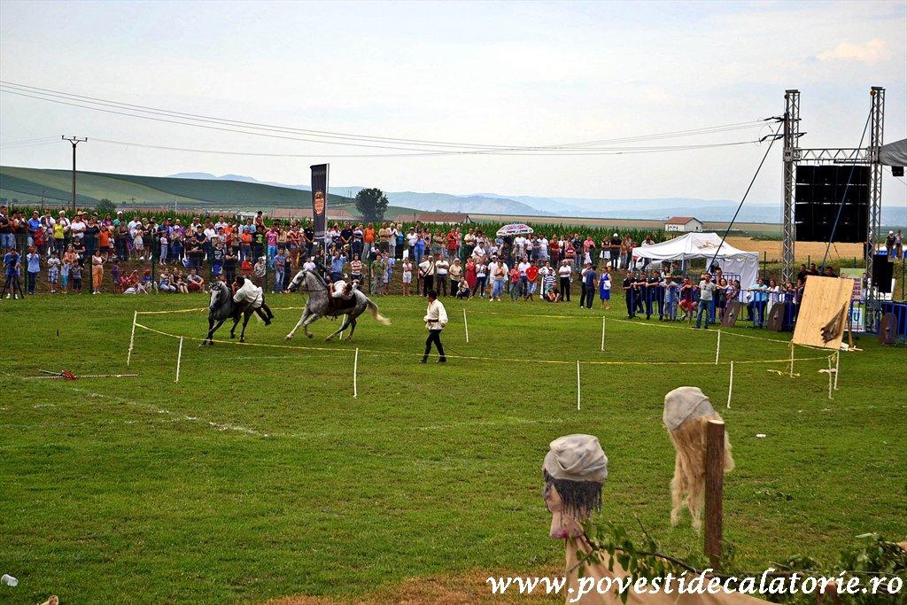 Festivalul Cetatilor Dacice din Cricau 2013 (59 of 82)