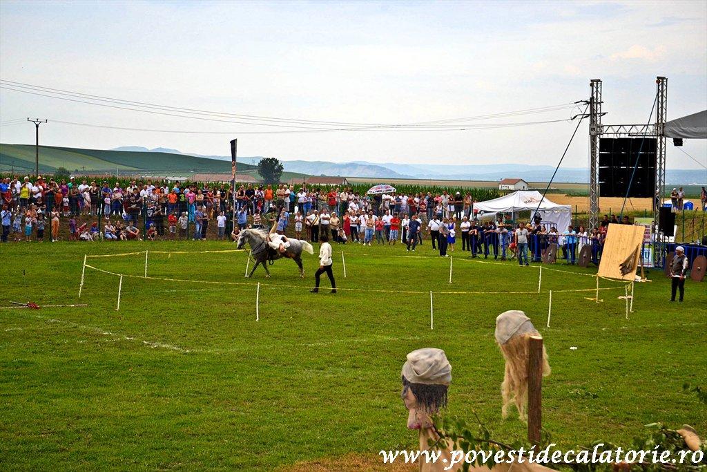 Festivalul Cetatilor Dacice din Cricau 2013 (60 of 82)