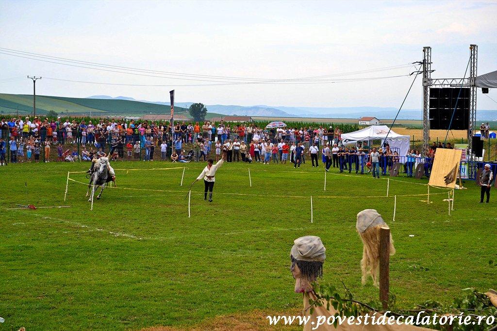 Festivalul Cetatilor Dacice din Cricau 2013 (61 of 82)