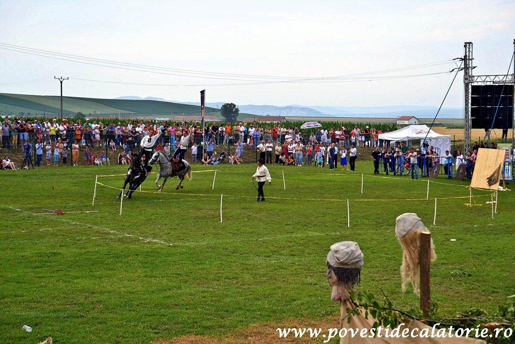 Festivalul Cetatilor Dacice din Cricau 2013 (62 of 82)
