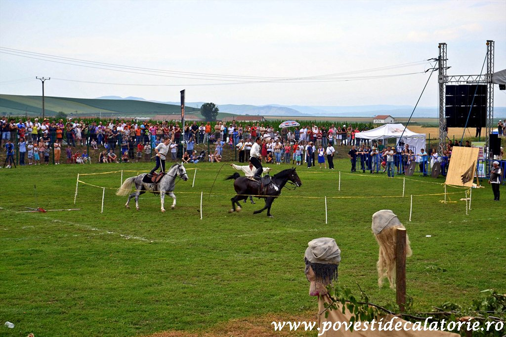 Festivalul Cetatilor Dacice din Cricau 2013 (63 of 82)