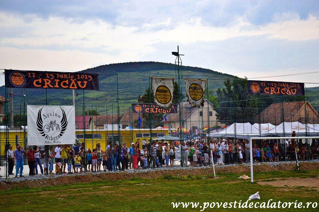 Festivalul Cetatilor Dacice din Cricau 2013 (64 of 82)