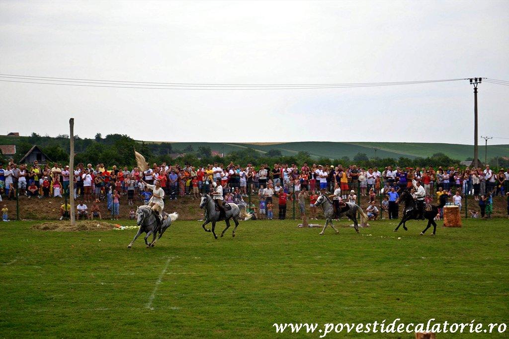 Festivalul Cetatilor Dacice din Cricau 2013 (65 of 82)