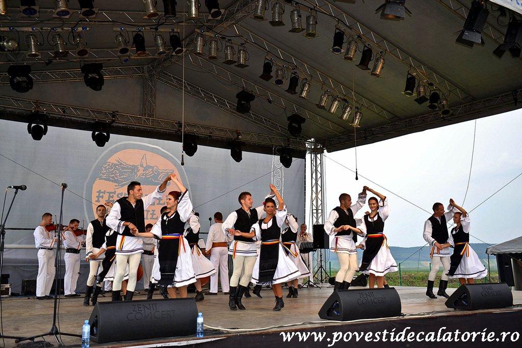 Festivalul Cetatilor Dacice din Cricau 2013 (70 of 82)