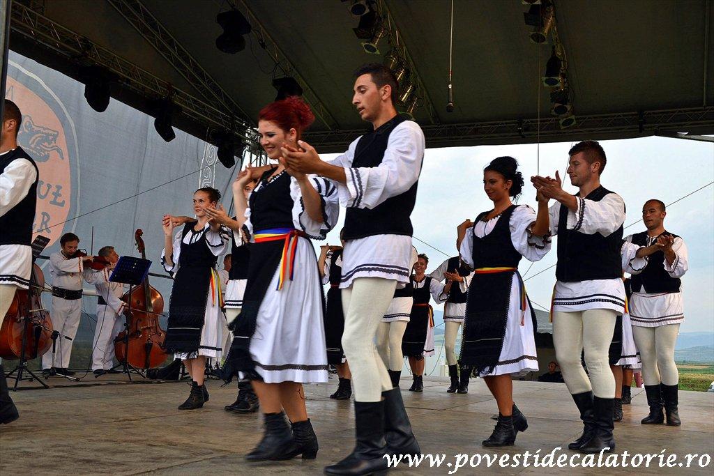 Festivalul Cetatilor Dacice din Cricau 2013 (71 of 82)