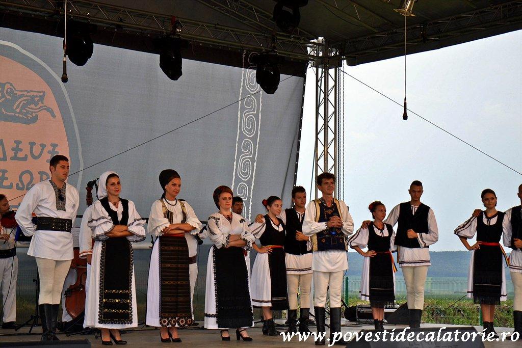 Festivalul Cetatilor Dacice din Cricau 2013 (75 of 82)