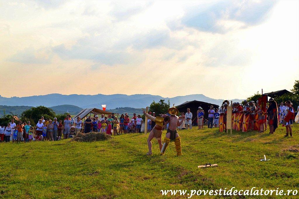 Festivalul Cetatilor Dacice din Cricau 2013 (8 of 82)