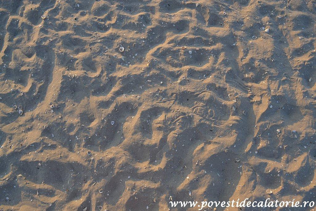 Plaja Navodari (12)