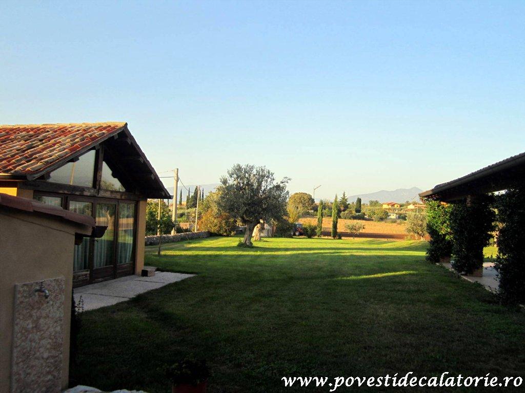 Sambuco Italia (6)