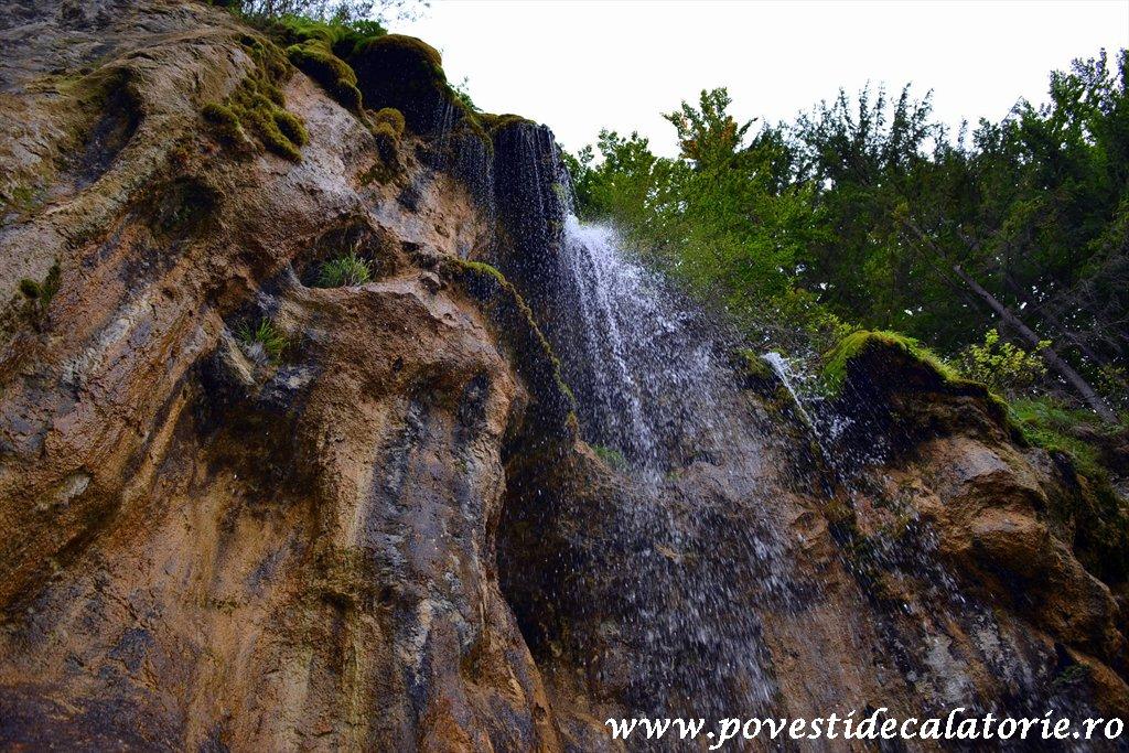 Cascada Pisoaia Vidra Apuseni (16)