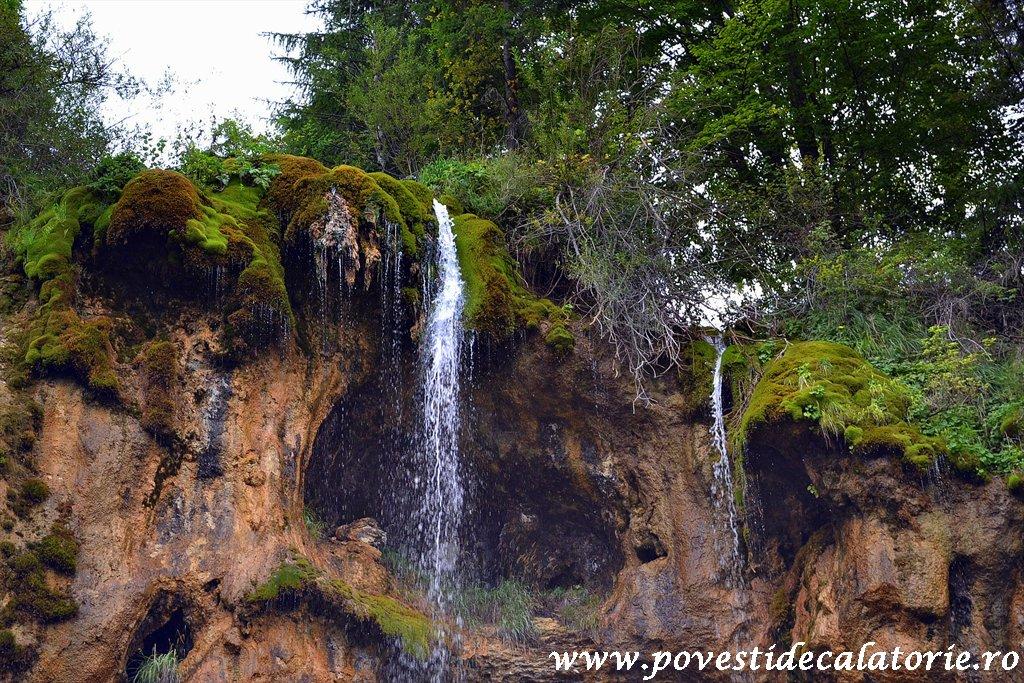 Cascada Pisoaia Vidra Apuseni (20)