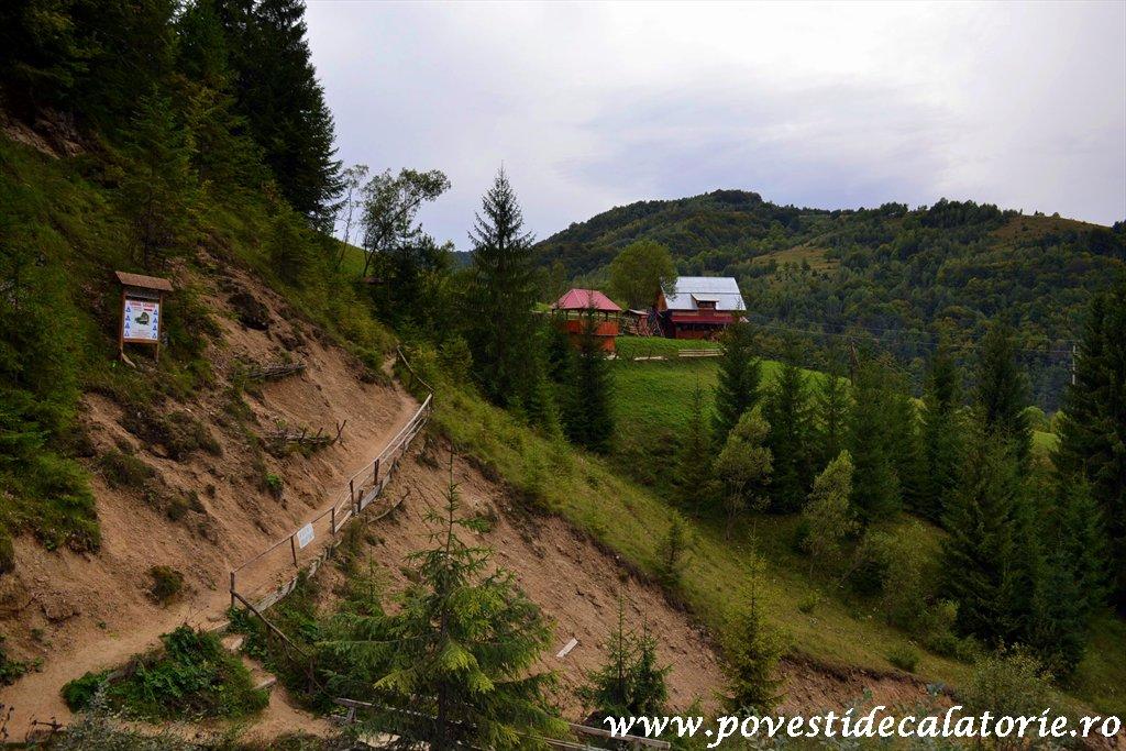 Cascada Pisoaia Vidra Apuseni (31)