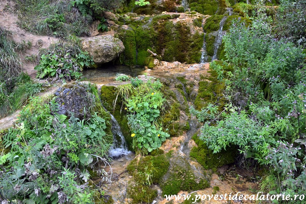 Cascada Pisoaia Vidra Apuseni (33)
