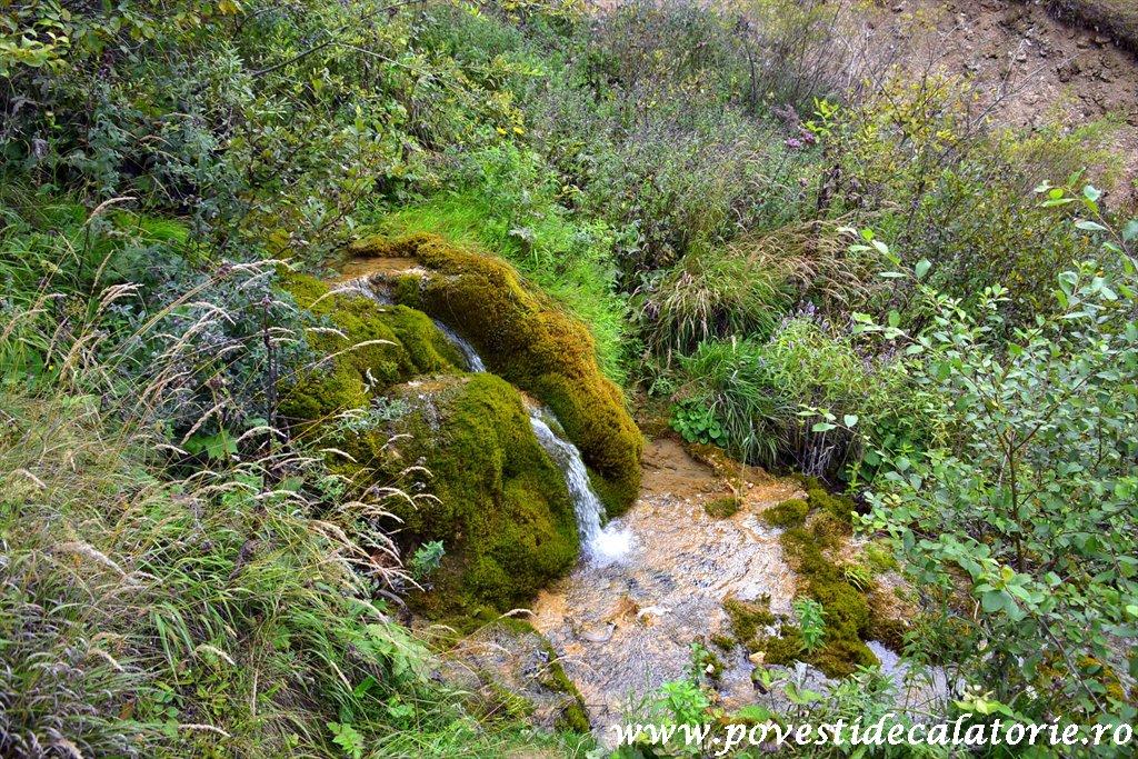 Cascada Pisoaia Vidra Apuseni (5)