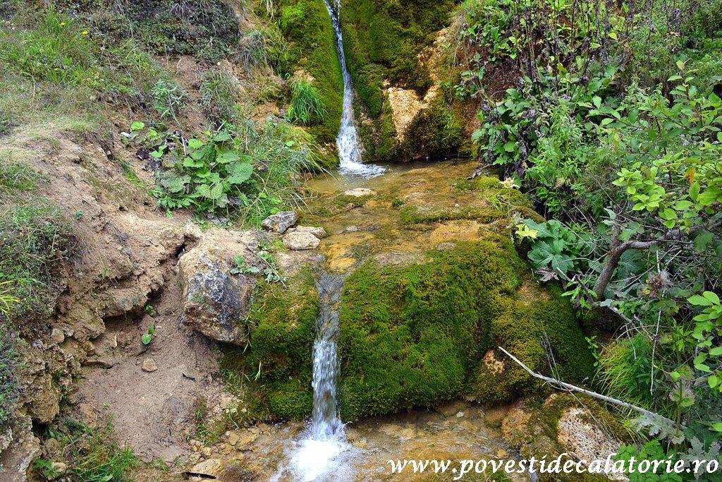 Cascada Pisoaia Vidra Apuseni (6)