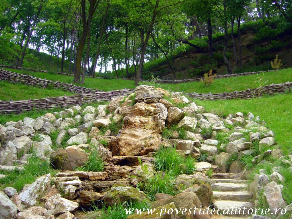 Schitul Nectarie Sinca Veche Fagaras (49)
