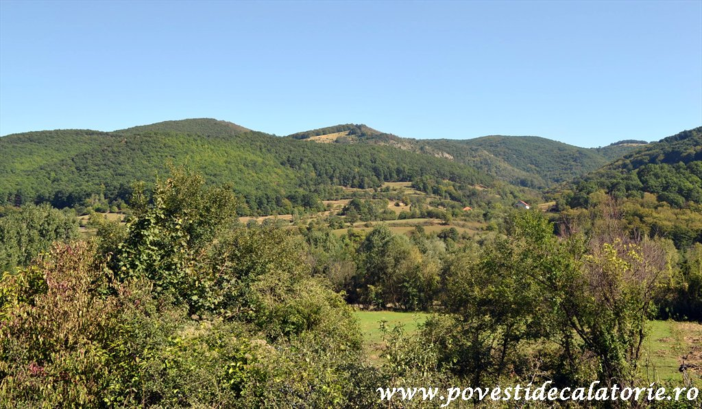 Targul National de Turism Rural Albac (175)