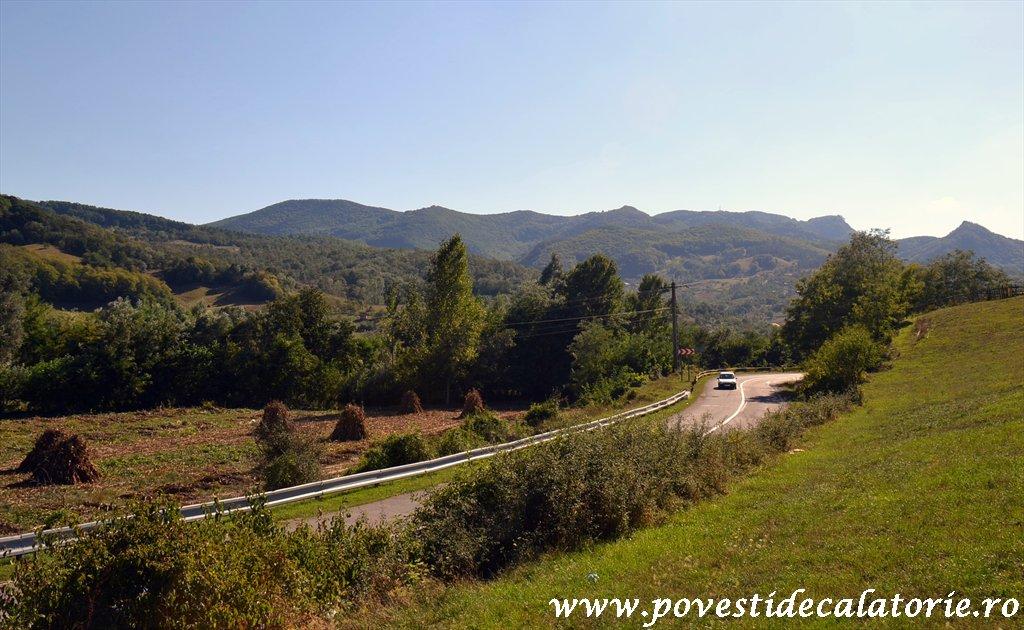 Targul National de Turism Rural Albac (177)