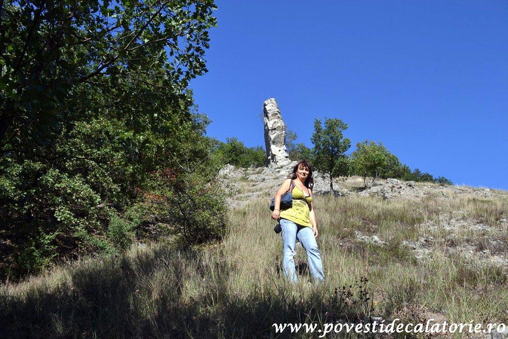 Targul National de Turism Rural Albac (201)