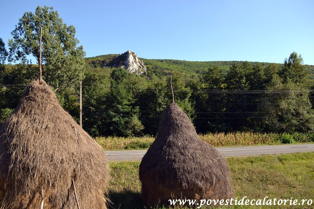Targul National de Turism Rural Albac (213)